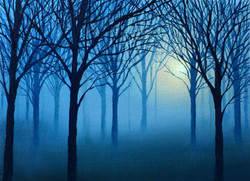 Nebbia all'alba