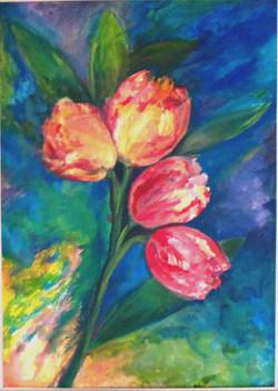2016 tulipani