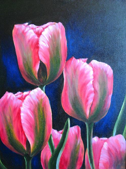 Grand Tulips