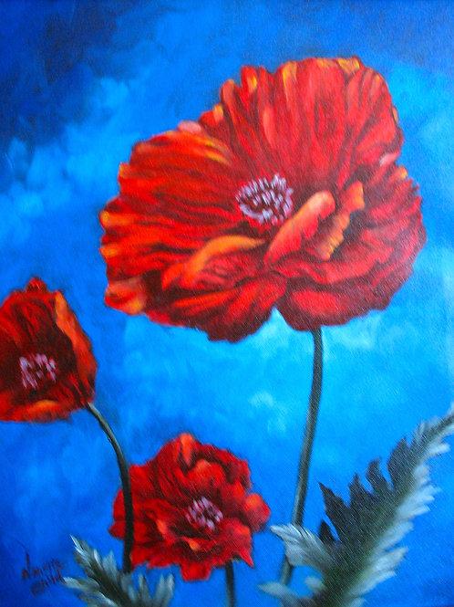 Blazing Poppies