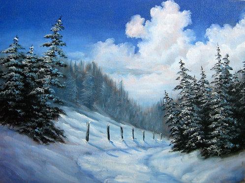 Winter Pine Meadows