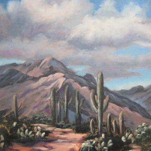 Saguaro National Monument