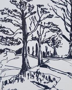 'Holkham Woodland'