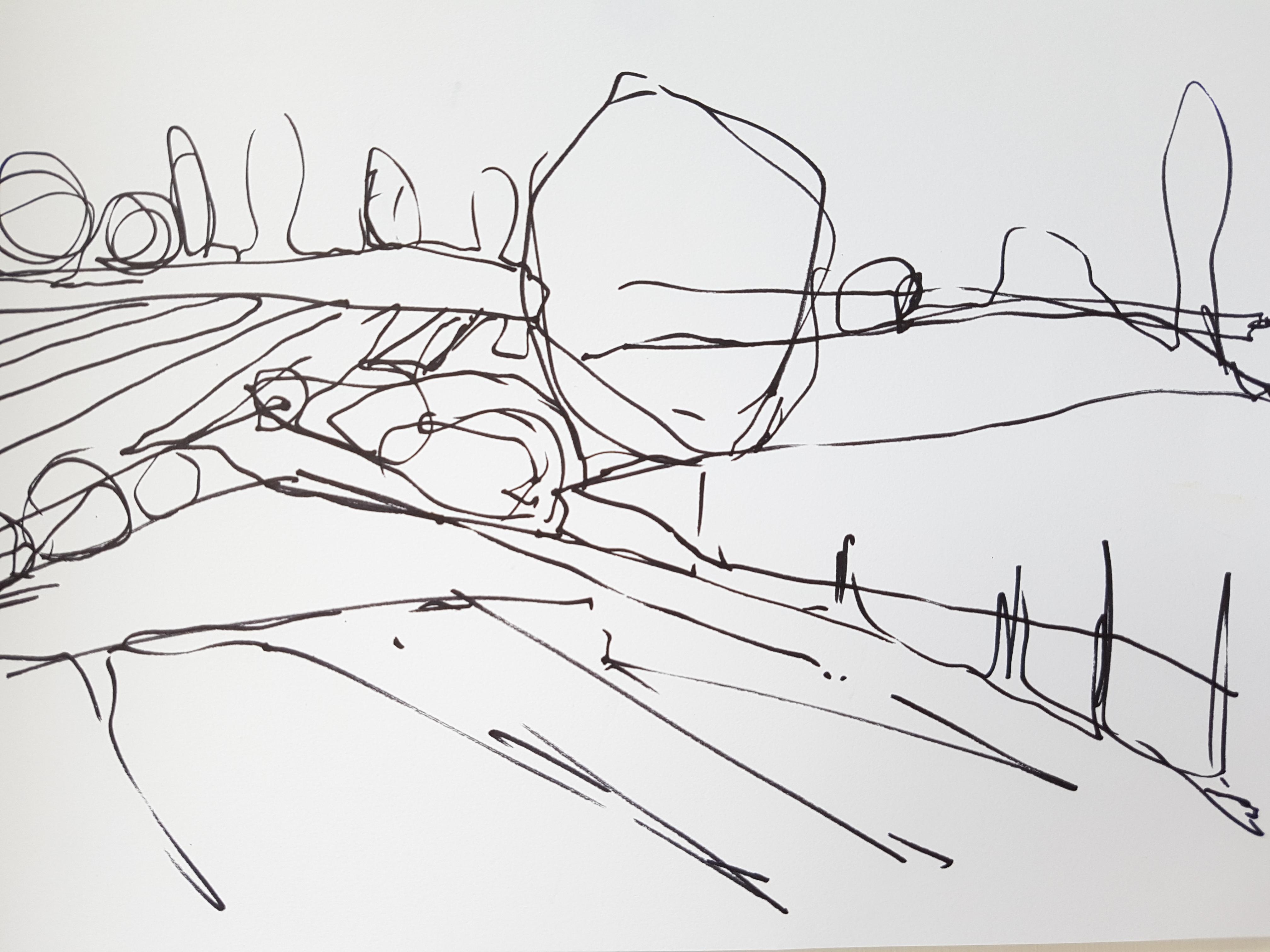 'Fields'