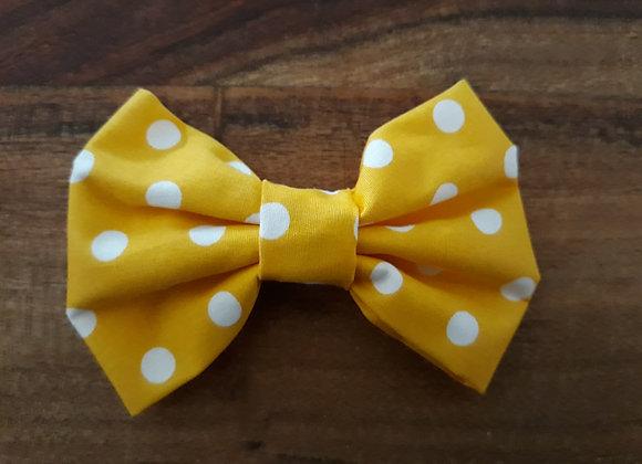 Yellow/White Spot Bow