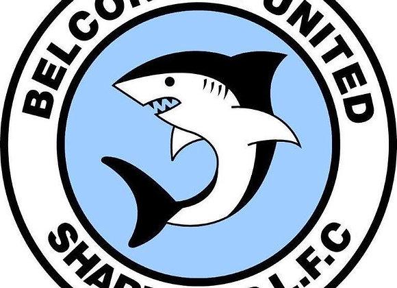 Belconnen United Sharks Earrings For Belinda