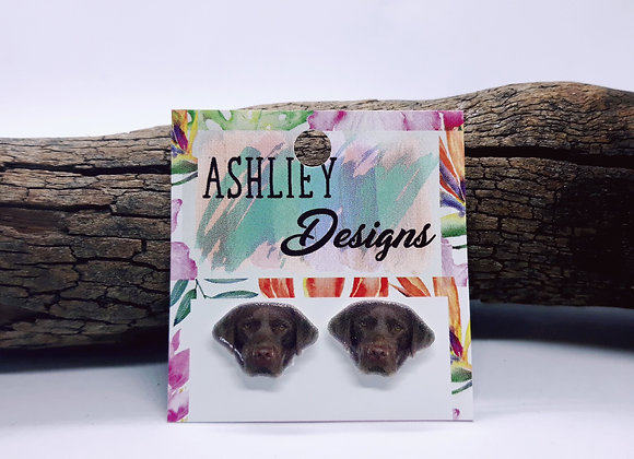 Brown Labrador Studs for Reavlyn