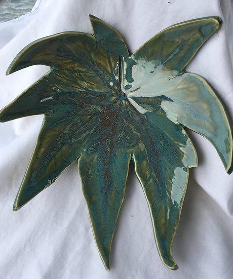 Begonia Leaf Dish