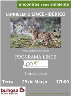 lince05.jpg
