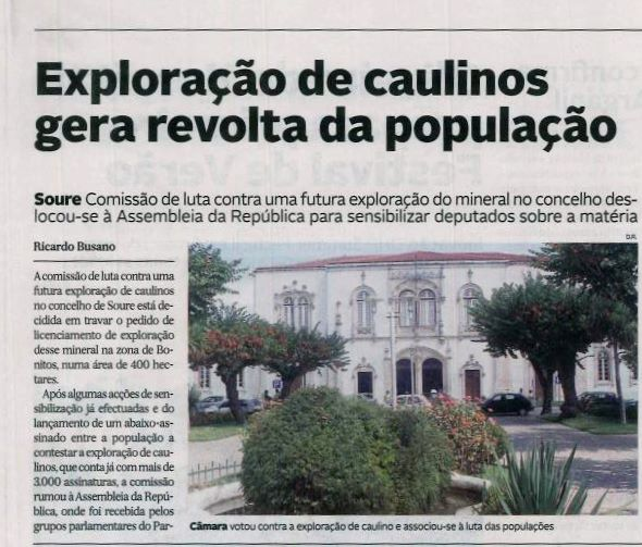 caulino-1.jpg
