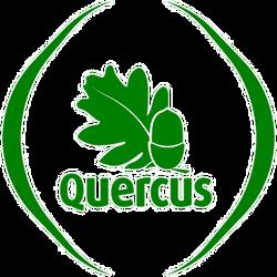 logo-quercus (1).png
