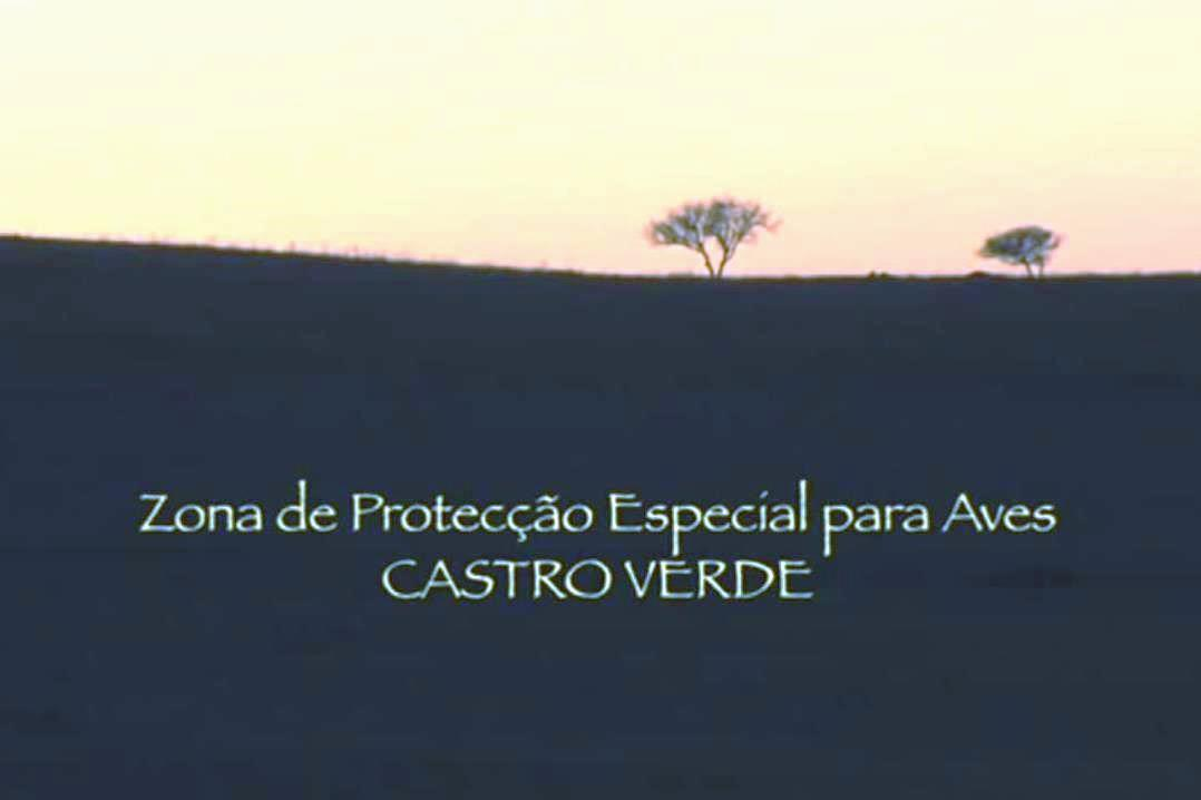 MEGA_AE_Castro Verde.jpg