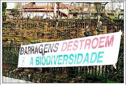 E_HE_4 Barragens Rio Tâmega_3_QUERCUS_1.jpg