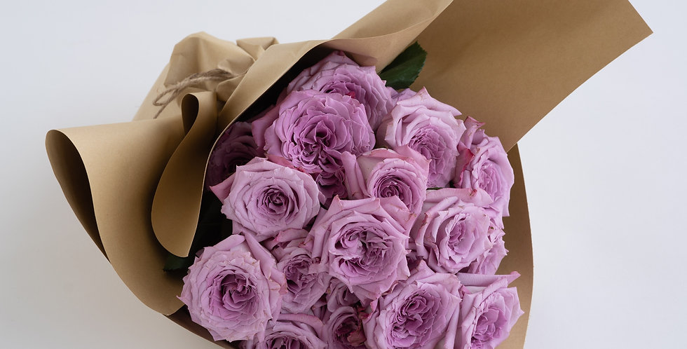 CLASSIC ROSE in Powdery Purple