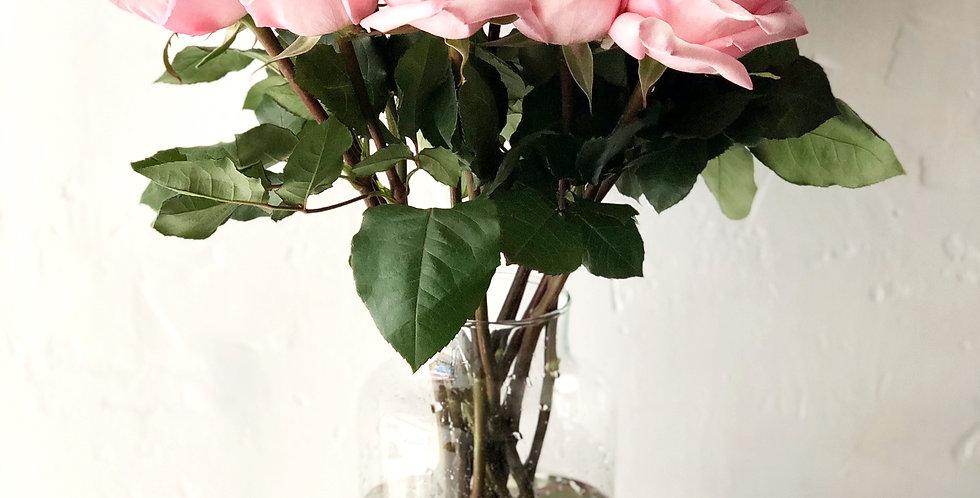 LONG STEM ROSE in Soft Pink