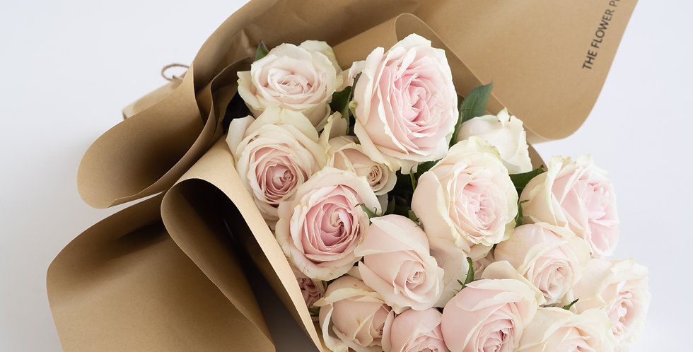 CLASSIC ROSE in Pale Pink