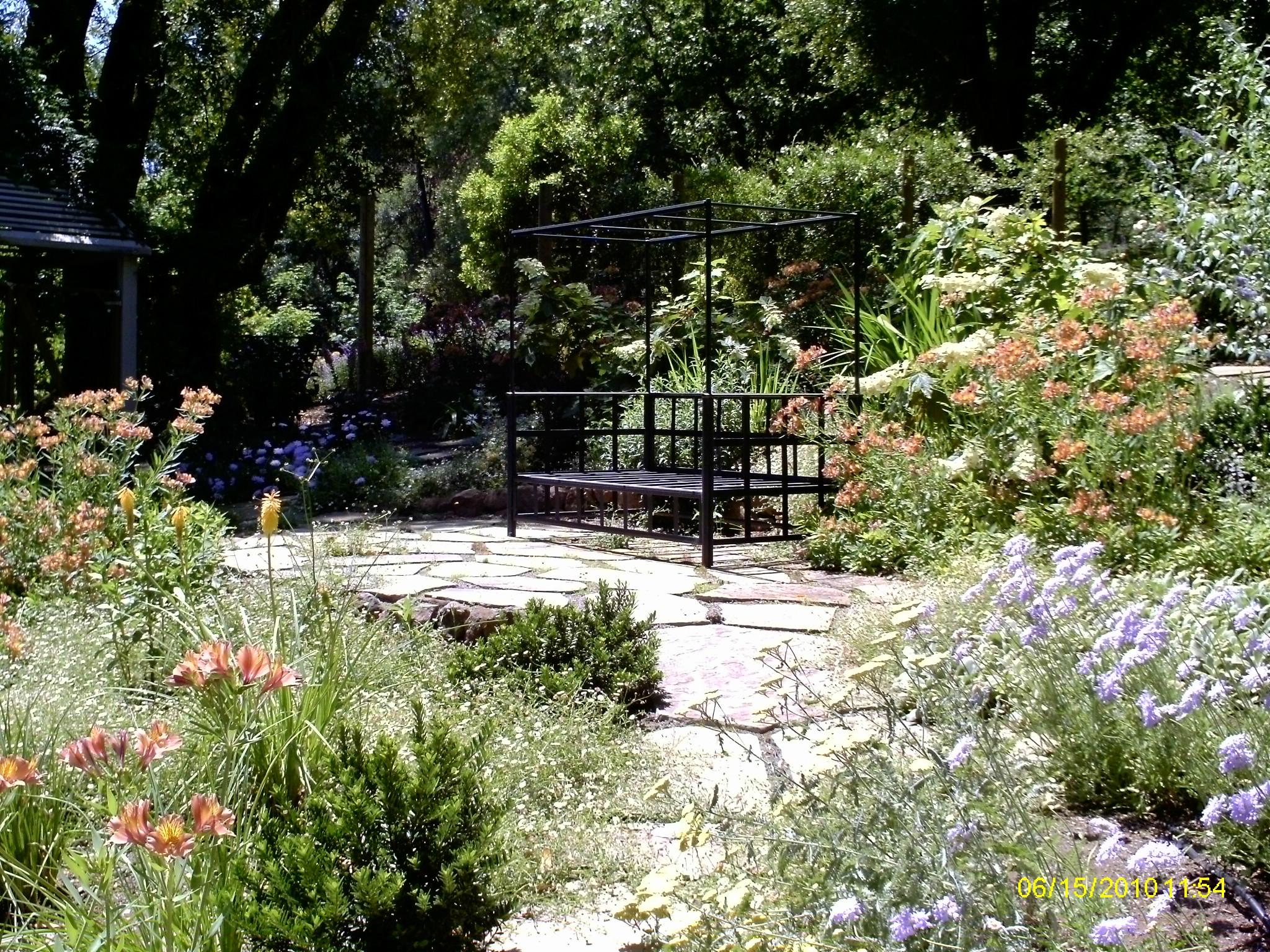 Burry flower garden.JPG