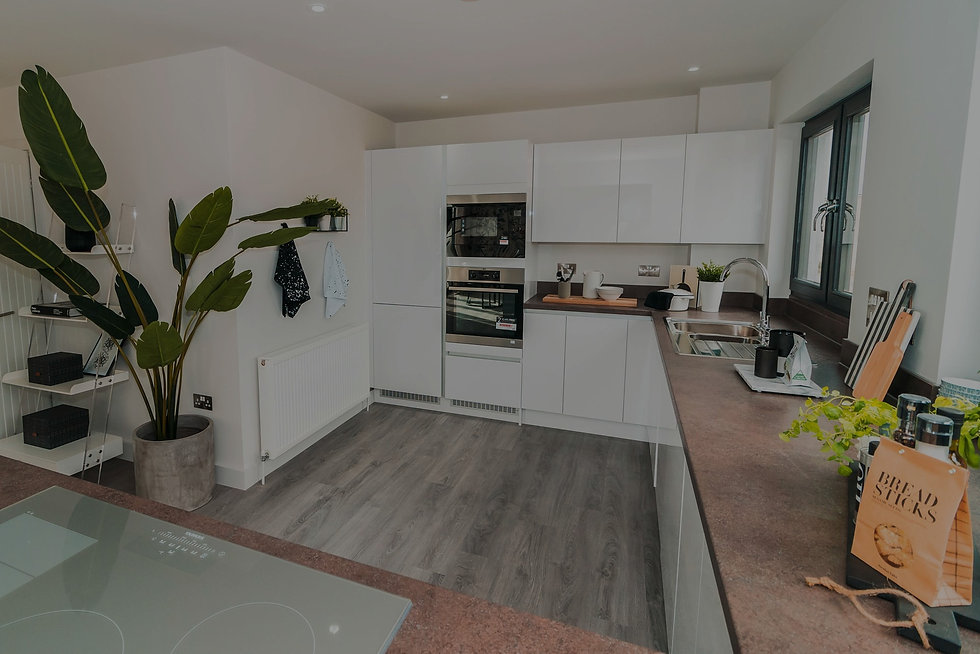 White kitchen with grey laminate flooring and an oven built into the wall. A large green plant is in the corner of the room.