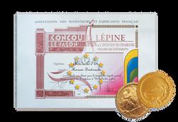 Диплом конкурса Lepin