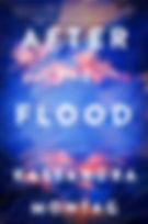 AftertheFlood1.jpg