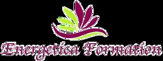 Logo%20energetica%20bordeauxvert2-sitewe