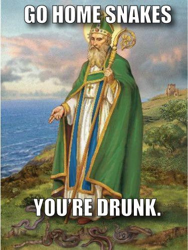 St. Patrick and snakes.jpg
