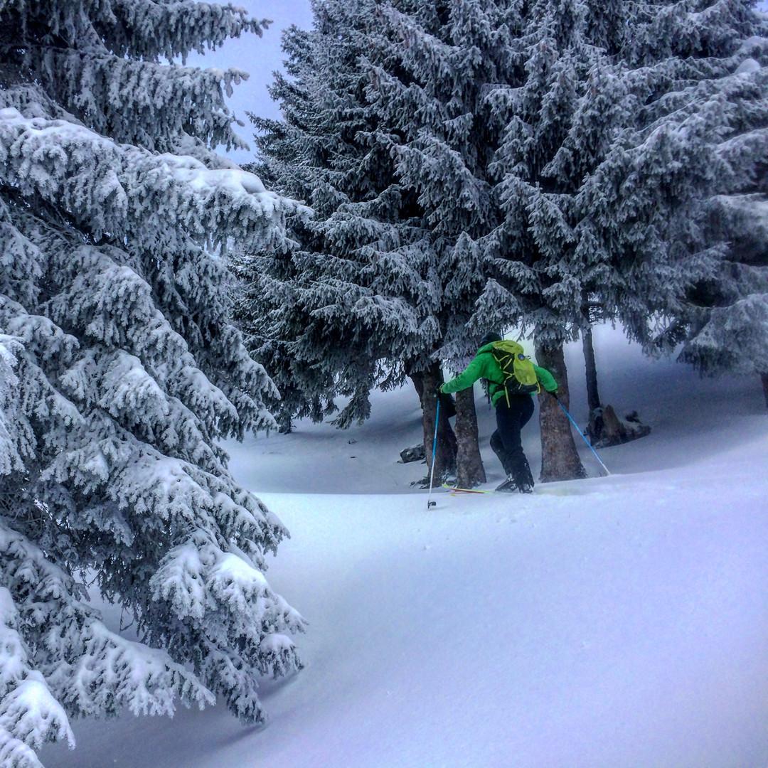 Ski derando