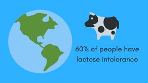 Lactose Intolerance: a quick guide