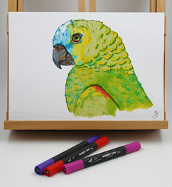 parrot markers-small.jpg