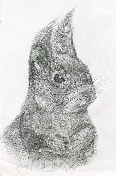squirrel-small.jpg