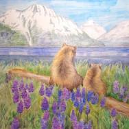 медведи.jpg