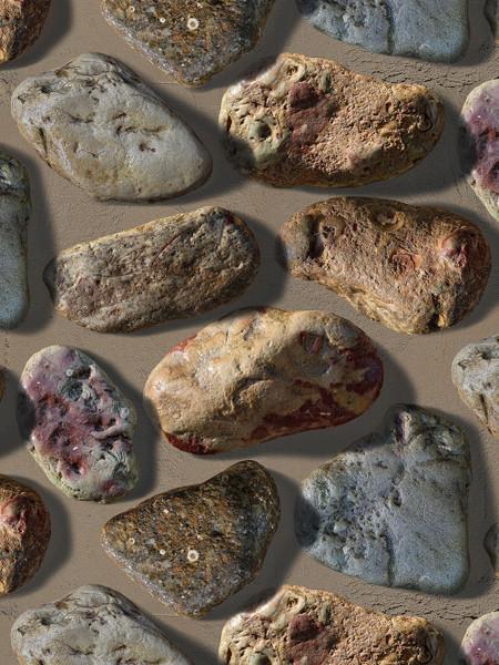 garden stones.jpg