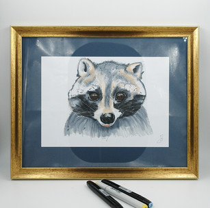 racoon markers-small.jpg