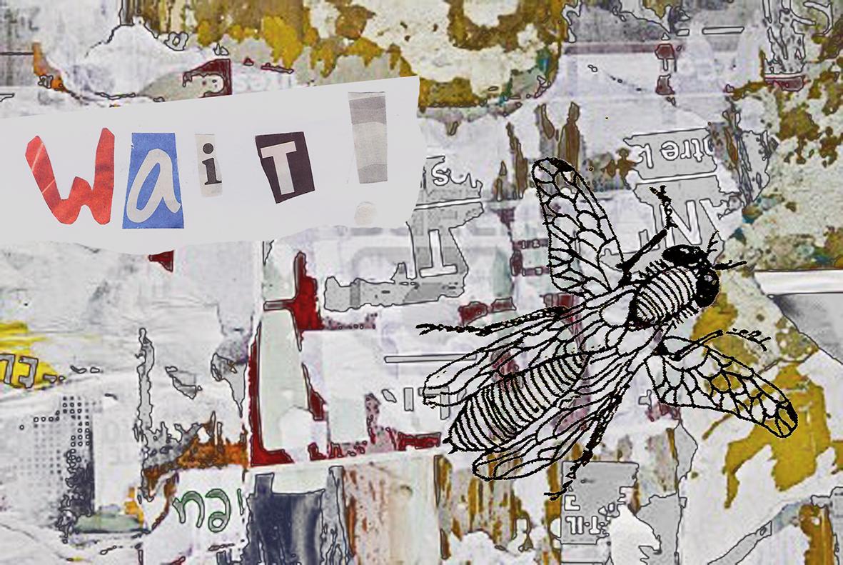 wallpaper-27