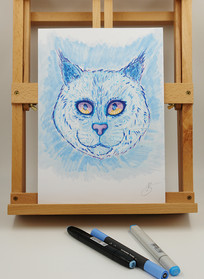 cat markers-small.jpg