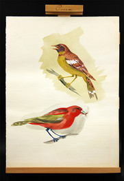 merry birds drawing.jpg