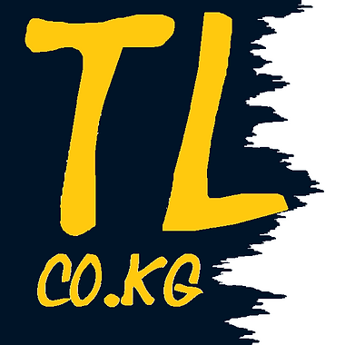 Taifun-Logistig-LOGO-620x620 -Steam.png