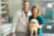 Vet with nurse and dog