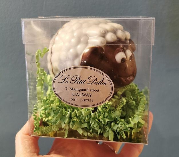Paddy The Sheep