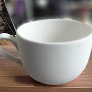GIANT 280z Latte/Soup Mug