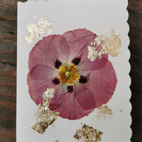 Dried Flower Cards