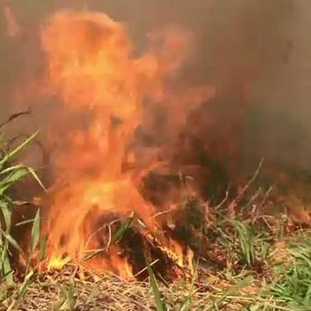 AC teve mais de meio milhão de hectares afetados por incêndios florestais em 33 anos, aponta estudo