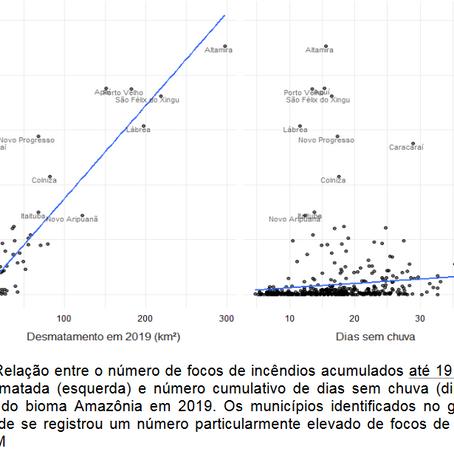Nota técnica – Amazônia em chamas