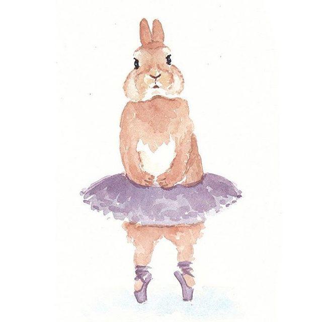 coelho bailarina