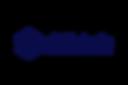 Logo-Skillchain.png