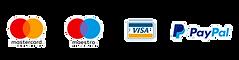 Loghi-carte-ecommerce.png