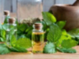 Lemon-Balm-Oil_-Guide-To-Essential-Oils_