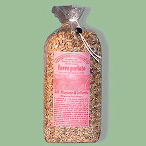 Pearl Barley from Colifiorito