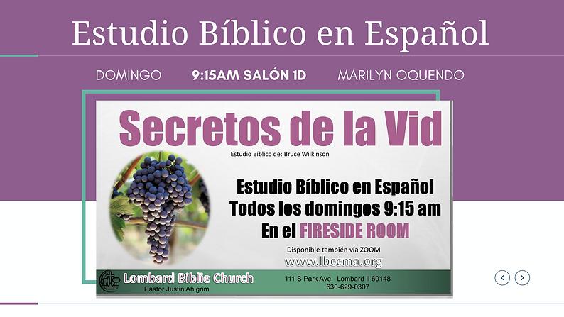 Estudio Bíblico en Español.png