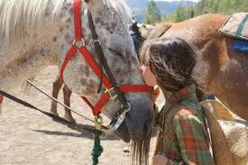 cby horse kiss retreat.jpg
